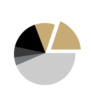 Circular pie chart with gold highlights